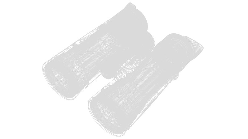 Drahtgittermodel des SkyHawk 4.0